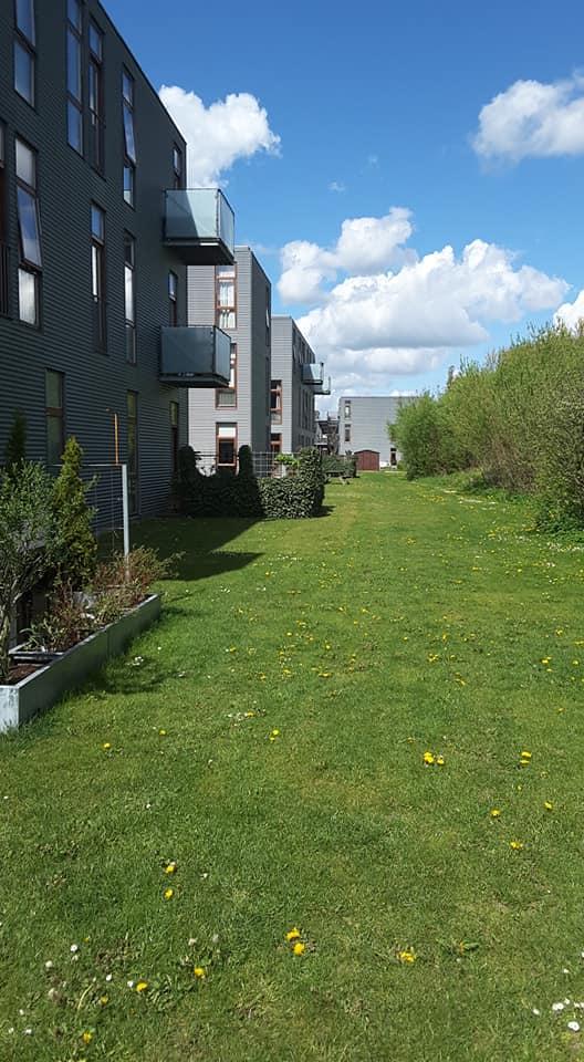 En del af de grønne arealer i Morelhaven - set fra legepladsen